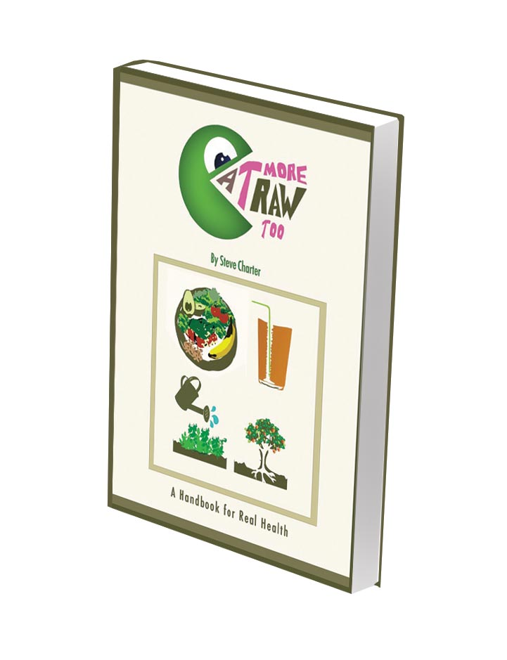 Eatmorerawtoo-book